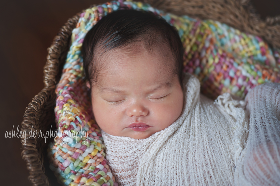 North Hills Newborn Photography