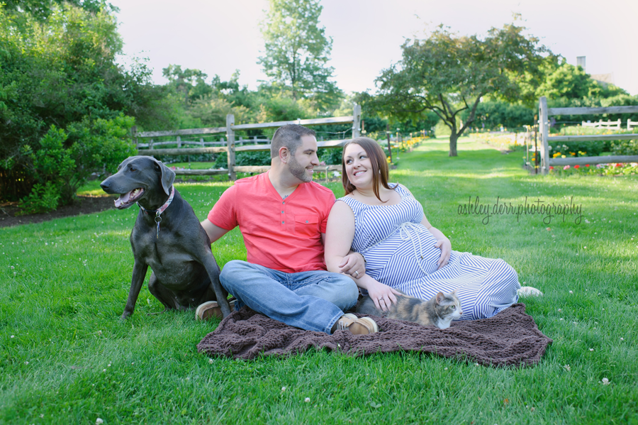 south hills pa maternity photography