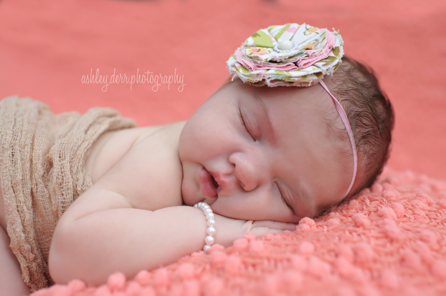 Best infant photography pittsburgh
