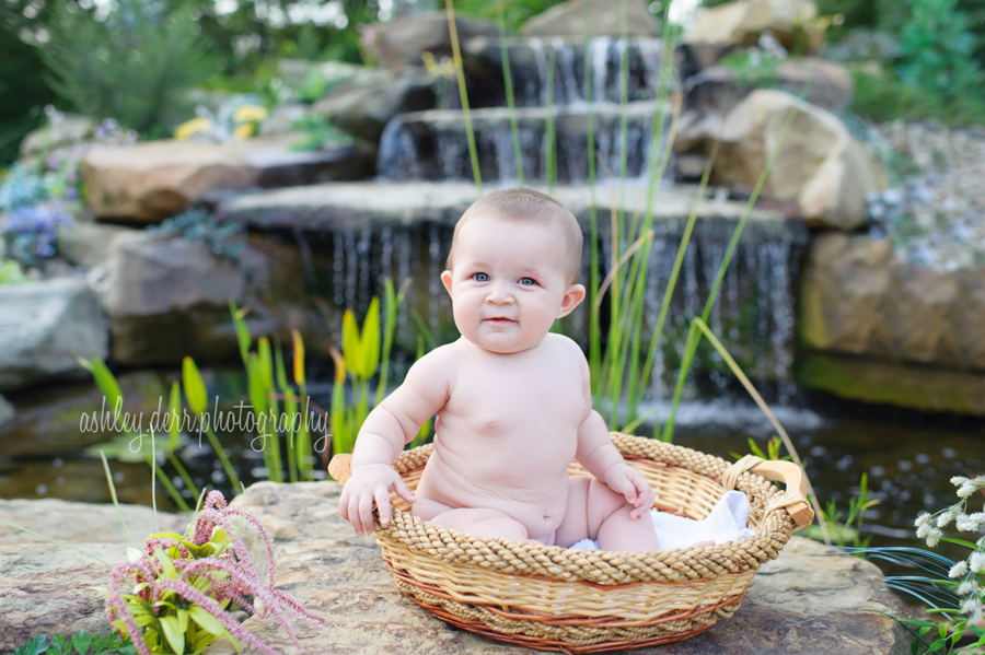 baby six month photographer