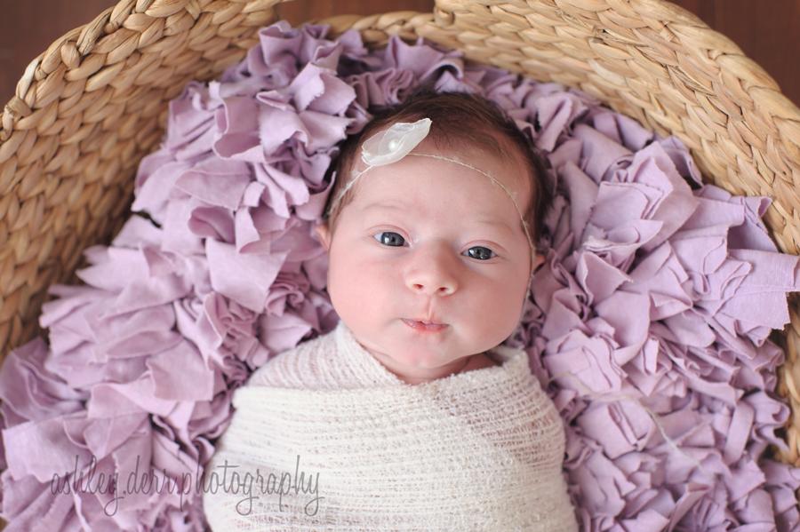 baby girl photographer pittsburgh