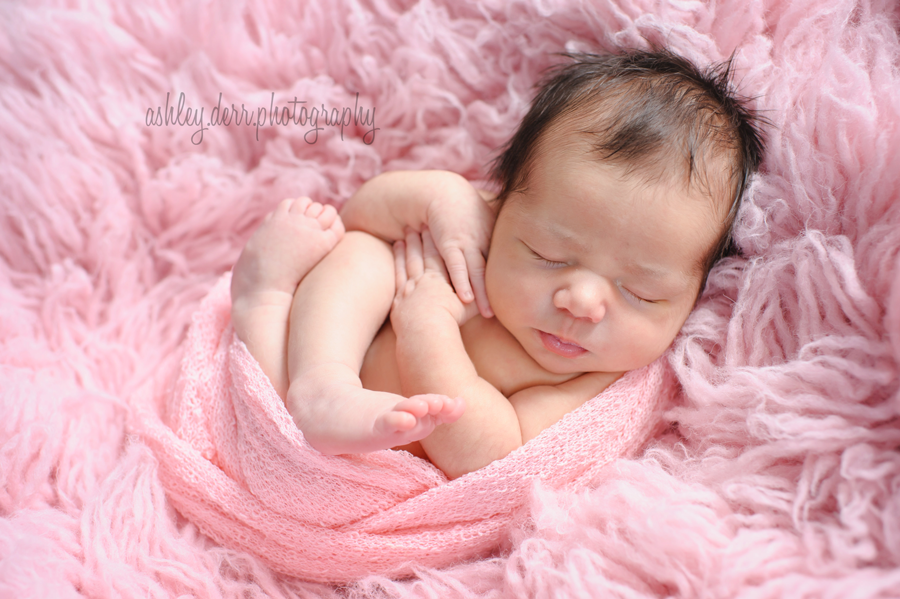 beautiful newborn baby girl pittsburgh