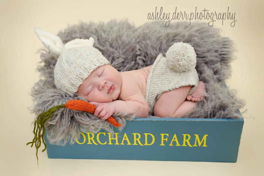 best pittsburgh newborn photographer
