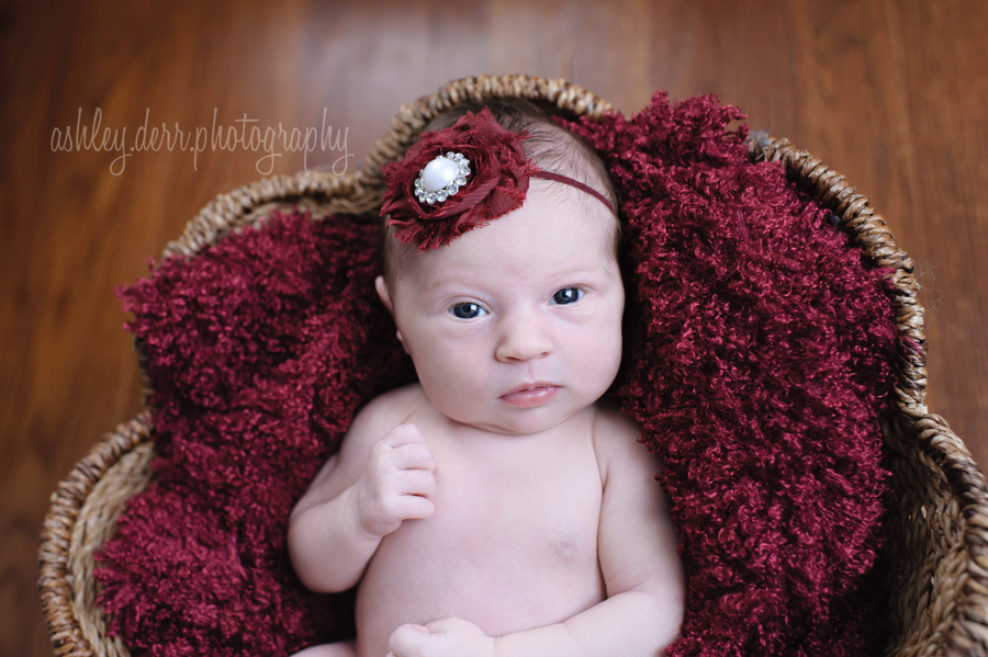 newborn photographers in pittsburgh pa