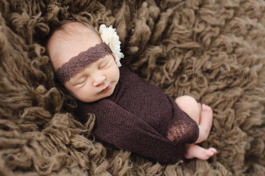 best pittsburgh newborn photographer on a budget