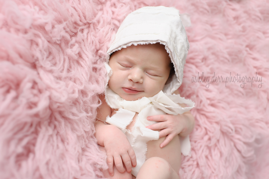 gibsonia pa baby photography