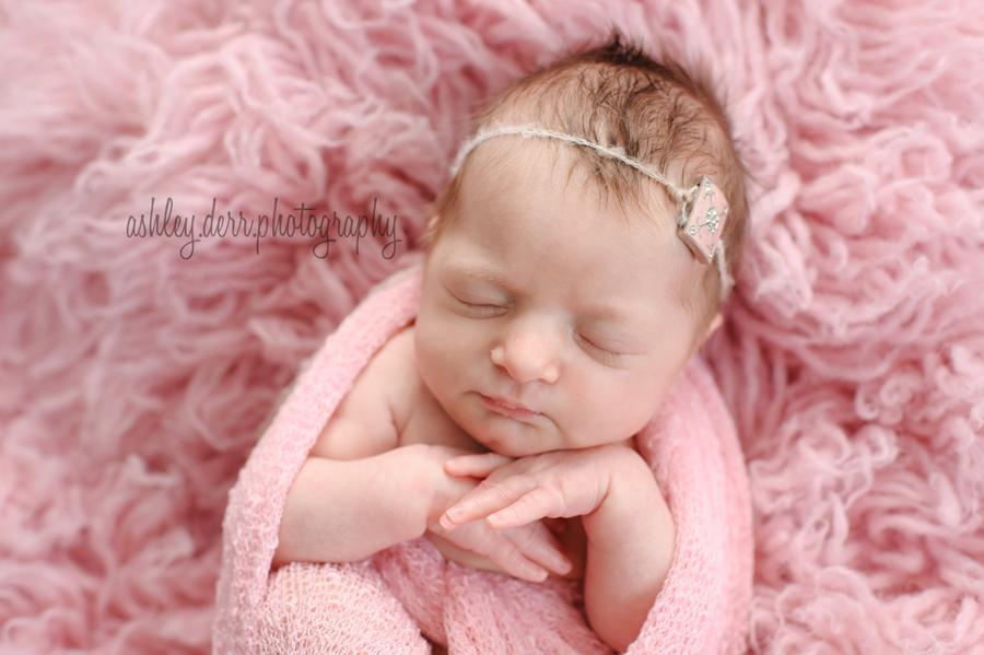 pittsburgh newborn mini session