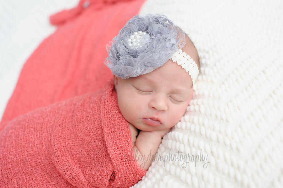 newborn mini session in pittsburgh pa