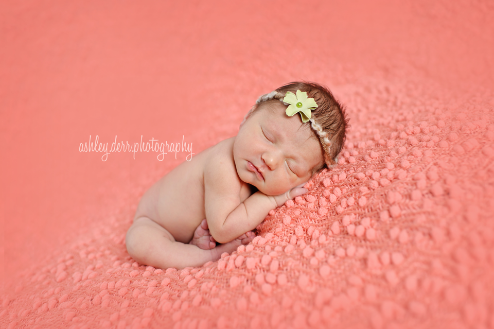 baby mini session pittsburgh