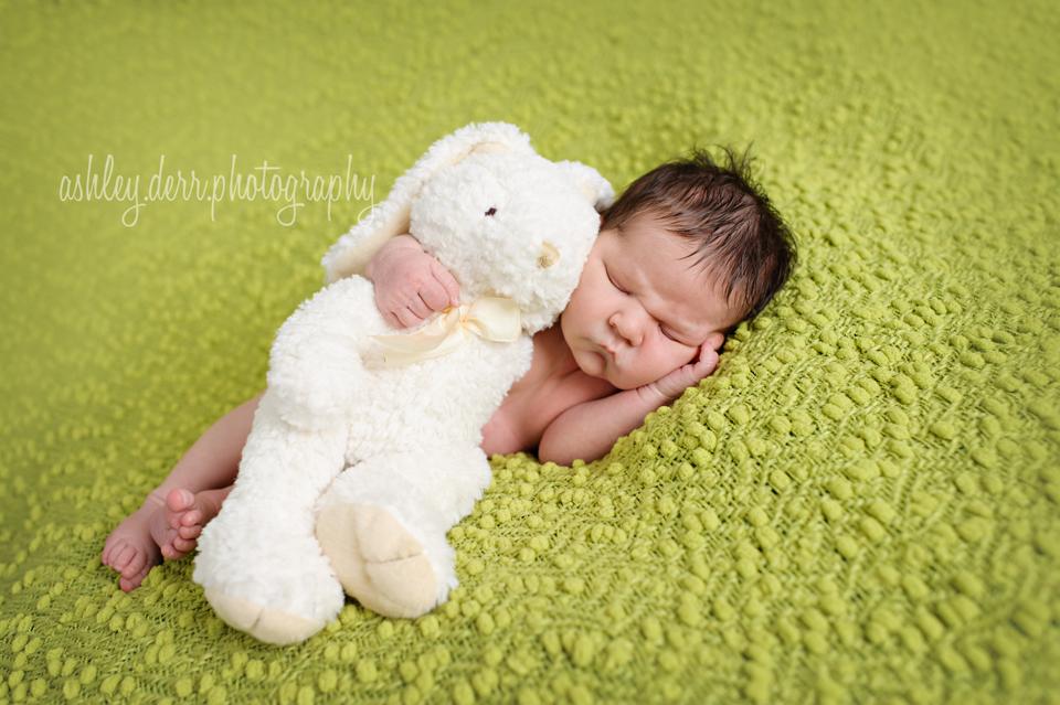 south pittsburgh newborn photographer