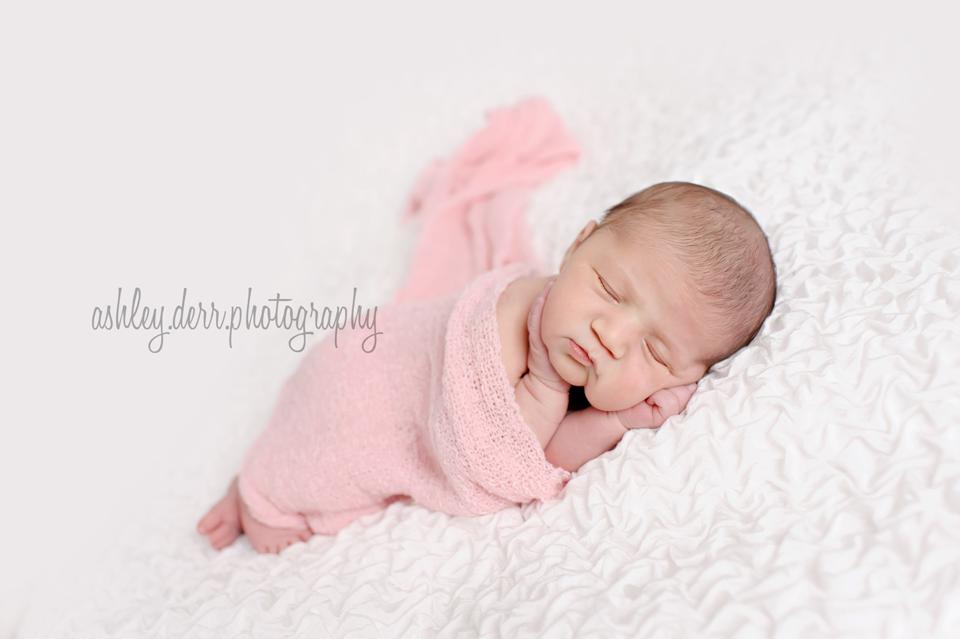 plum pa newborn photographer