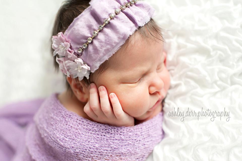 15227 baby photographer
