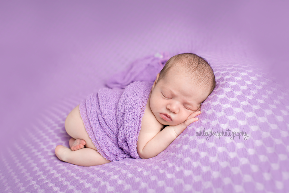 bridgeport newborn photographer western pa