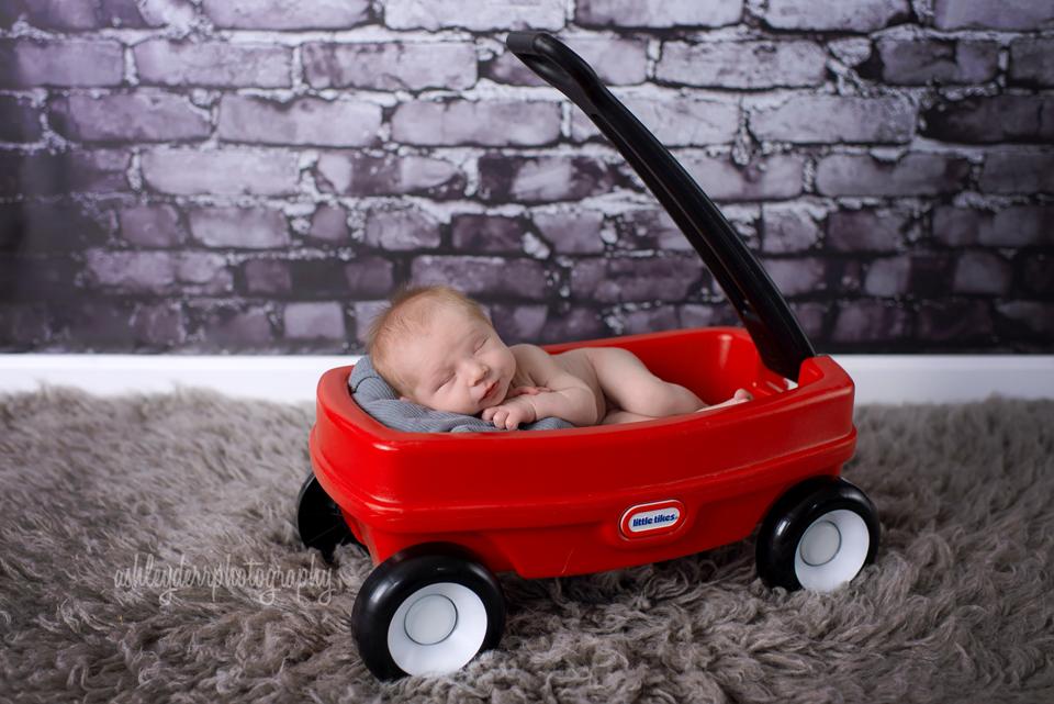 newborn photographer butler county pa