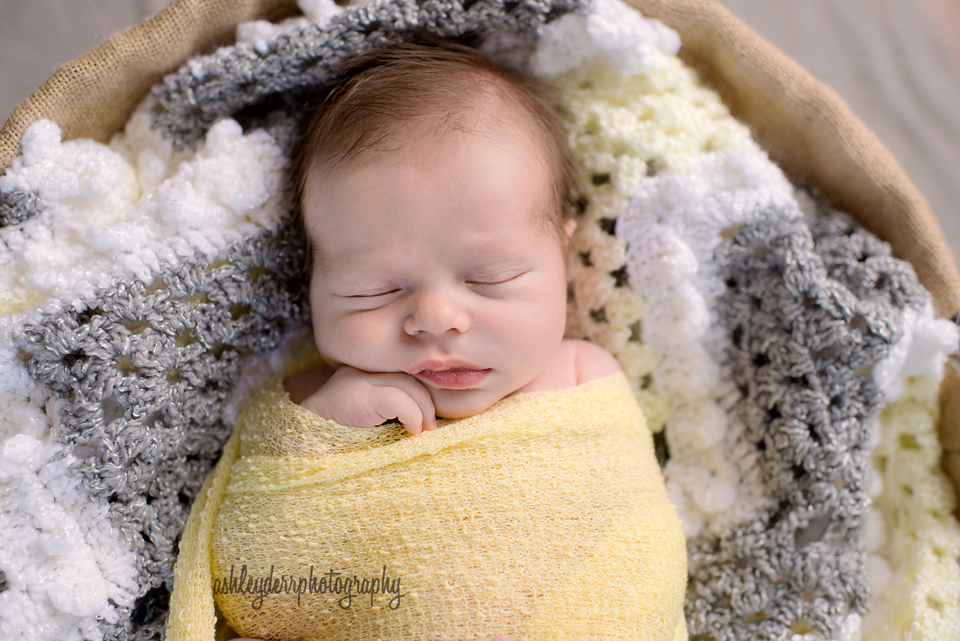 best pittsburgh north shore newborn infant photographer blues and yellows