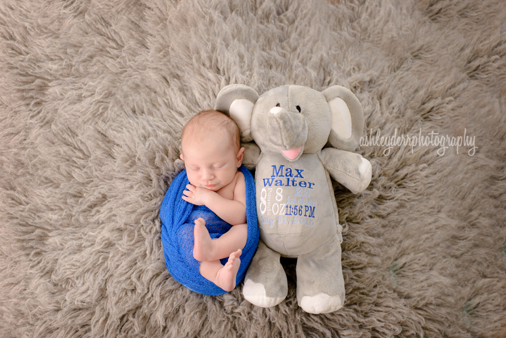 baby boy newborn photographer near pittsburgh