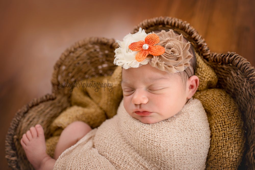 newborn photographers pittsburgh