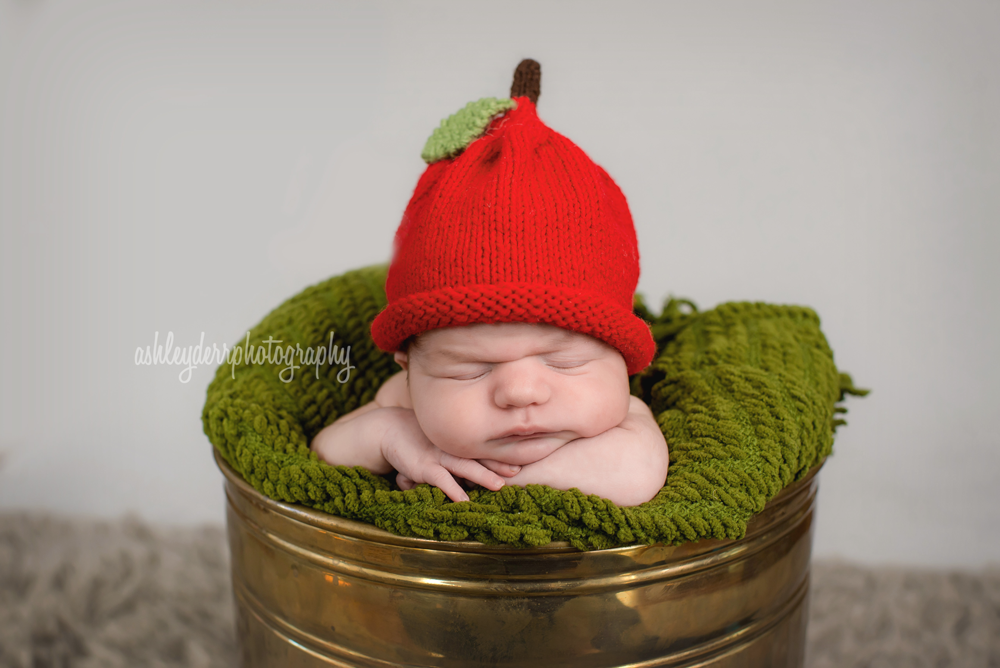 newborn boy photography pittsburgh ross twp