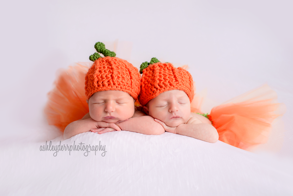 newborn twin girl photographer pittsburgh pa