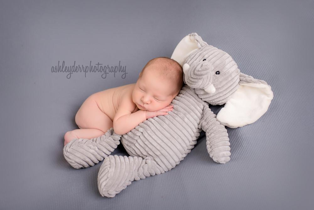 pittsburgh newborn photographer baby boy jefferson hills