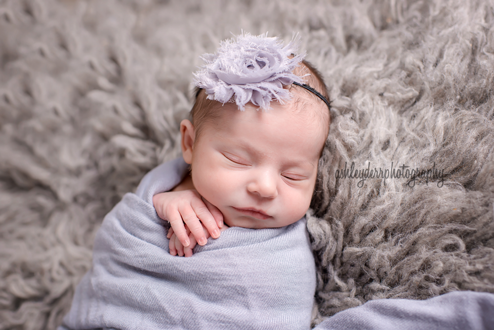 pittsburgh newborn infant baby photographers
