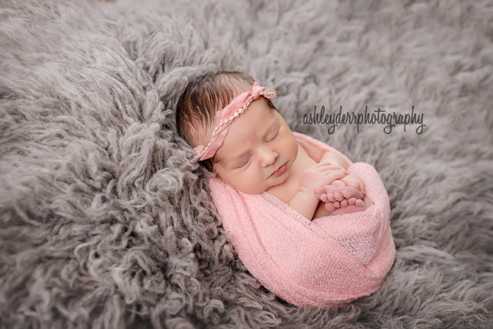 premier newborn and baby photographer pittsburgh pa