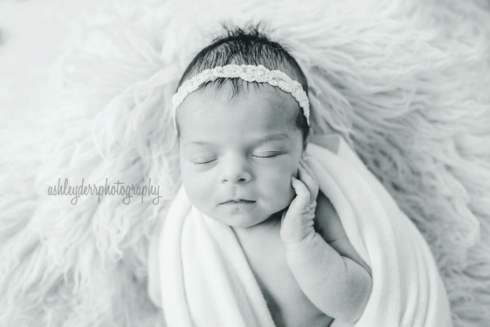 newborn baby girl photographer pittsburgh mini session 2016