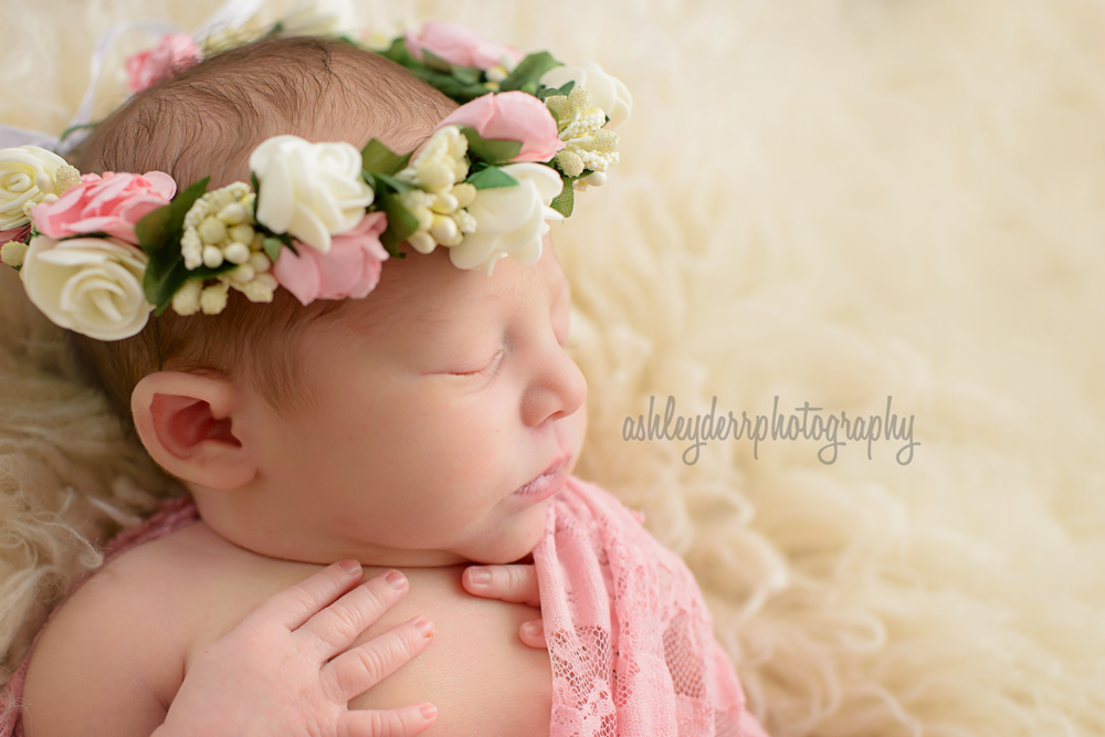affordable baby photographer pittsburgh pa