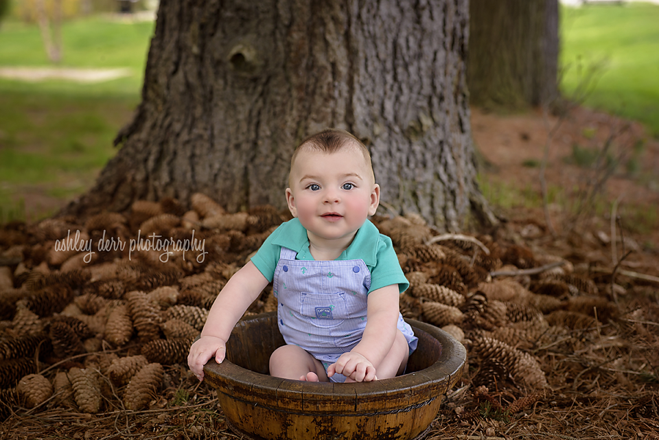 six month baby boy portrait photography pittsburgh