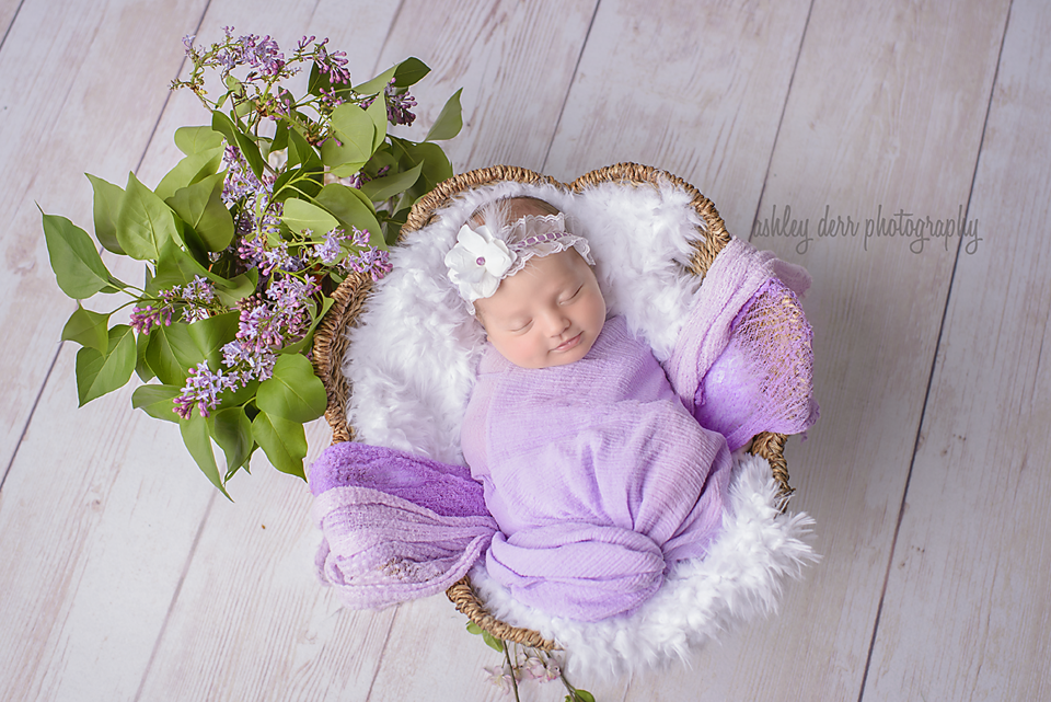 newborn photography mini session in pittsburgh western pa