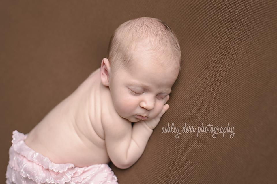 newborn mini session photographer pittsburgh