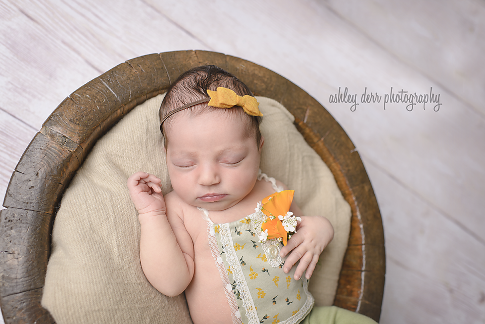 baby infant photographer pittsburgh