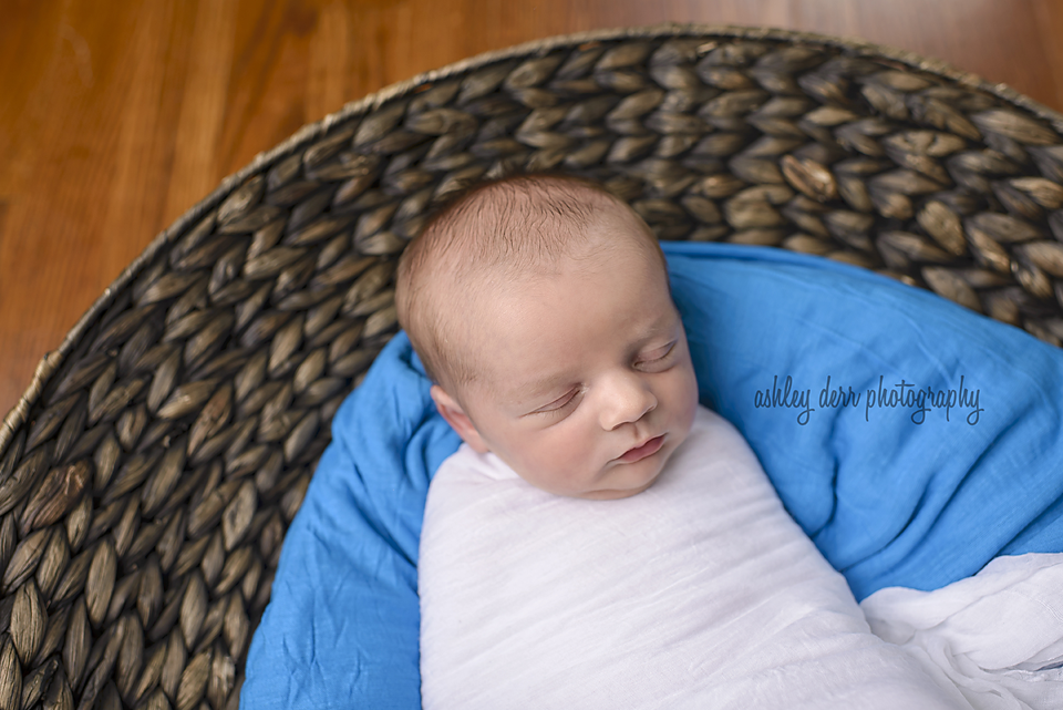 pittsburgh newborn mini session