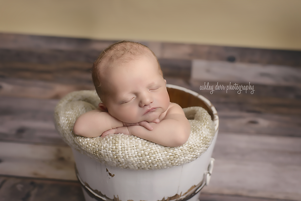 pittsburgh newborn baby photographer 2017