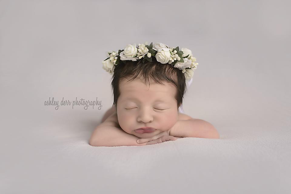newborn baby studio photography pittsburgh pa