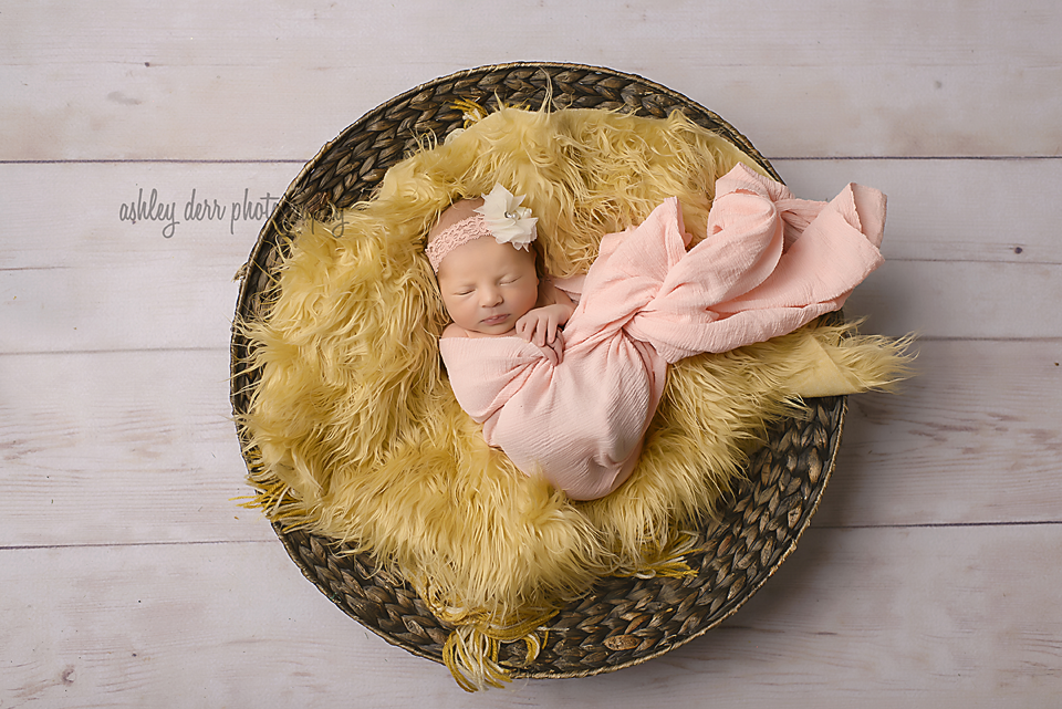 western pa pittsburgh newborn baby girl photographer