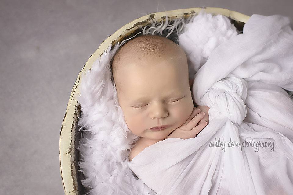 newborn photography pittsburgh wexford pa