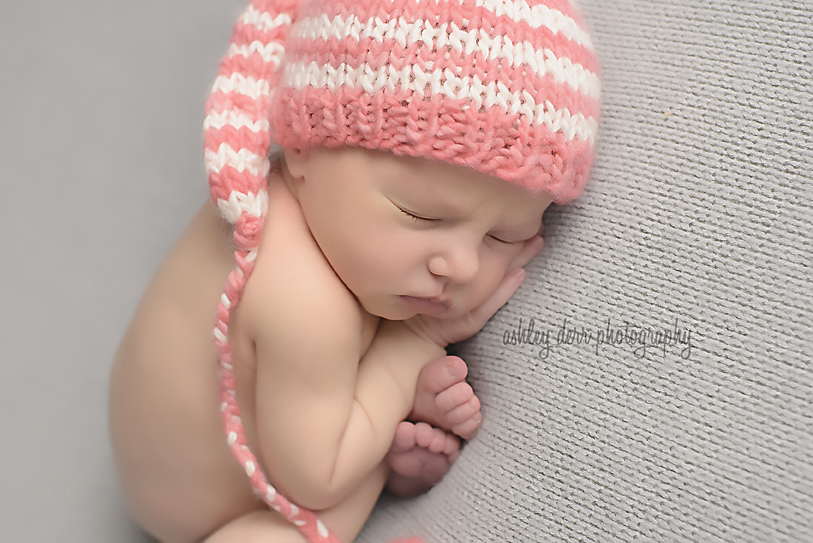 twin newborn photographer pittsburgh pa
