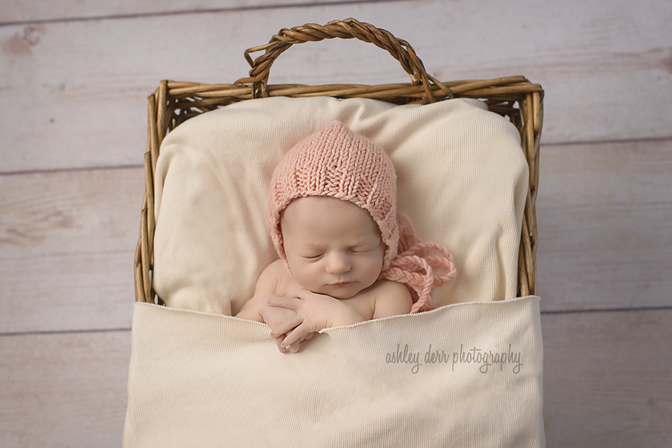 newborn photographer pittsburgh pa