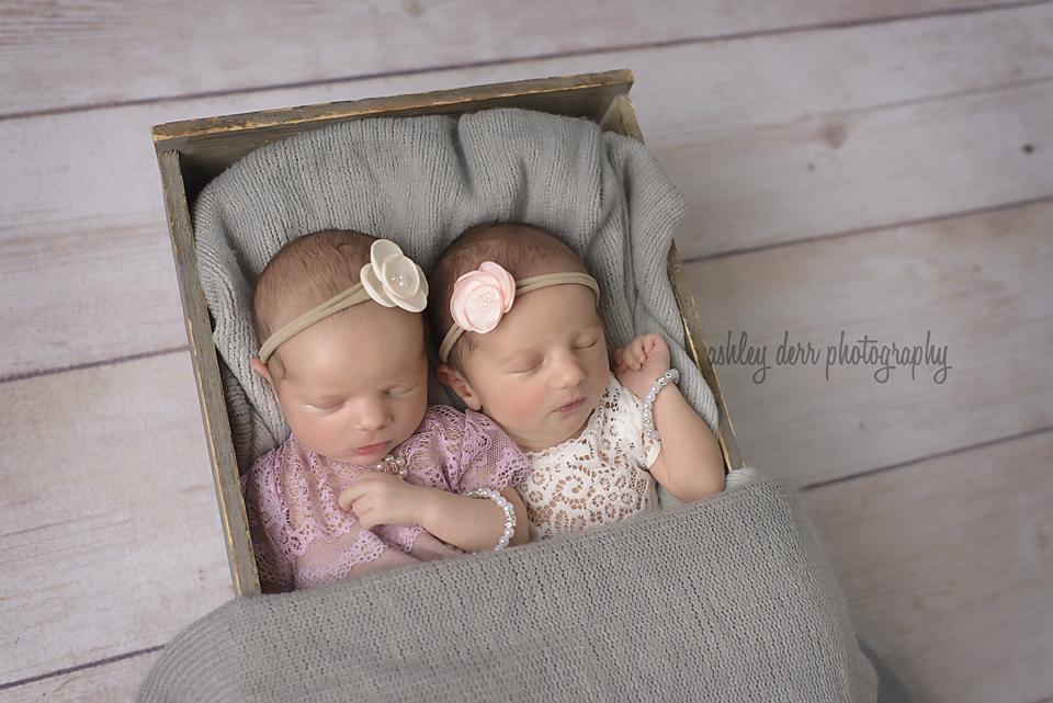 Twin newborn photographer pittsburgh