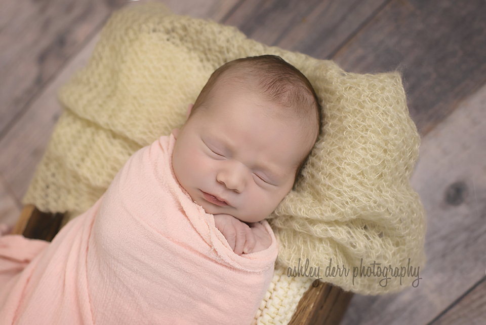 pittsburgh newborn baby photographers