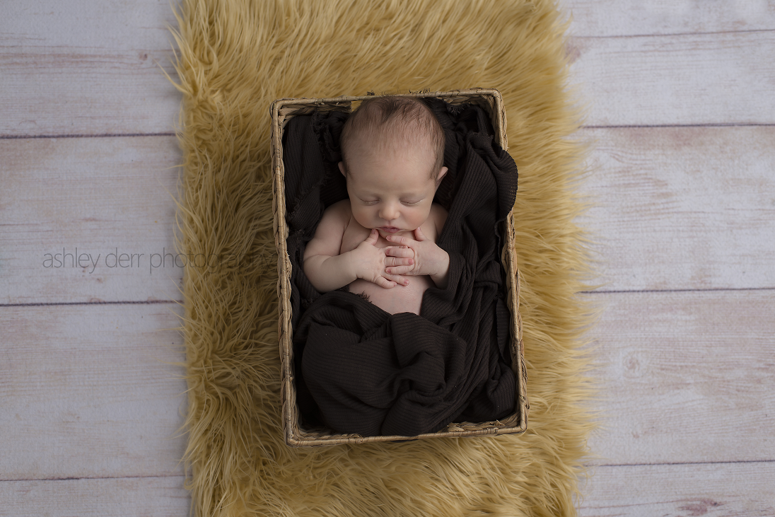 affordable newborn photographer in pittsburgh