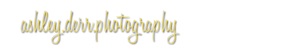 Ashley Derr Photography logo